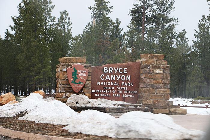 bryce4