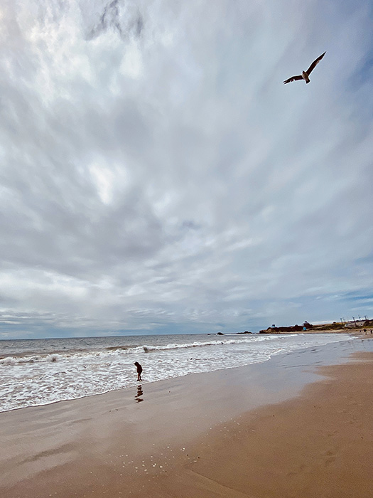 beaches-46