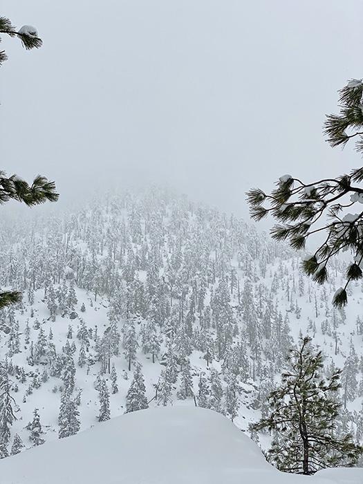winter-28